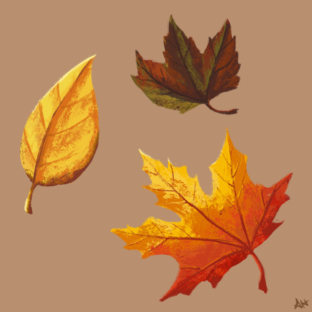 an illustration of three fall leaves by alleanna harris