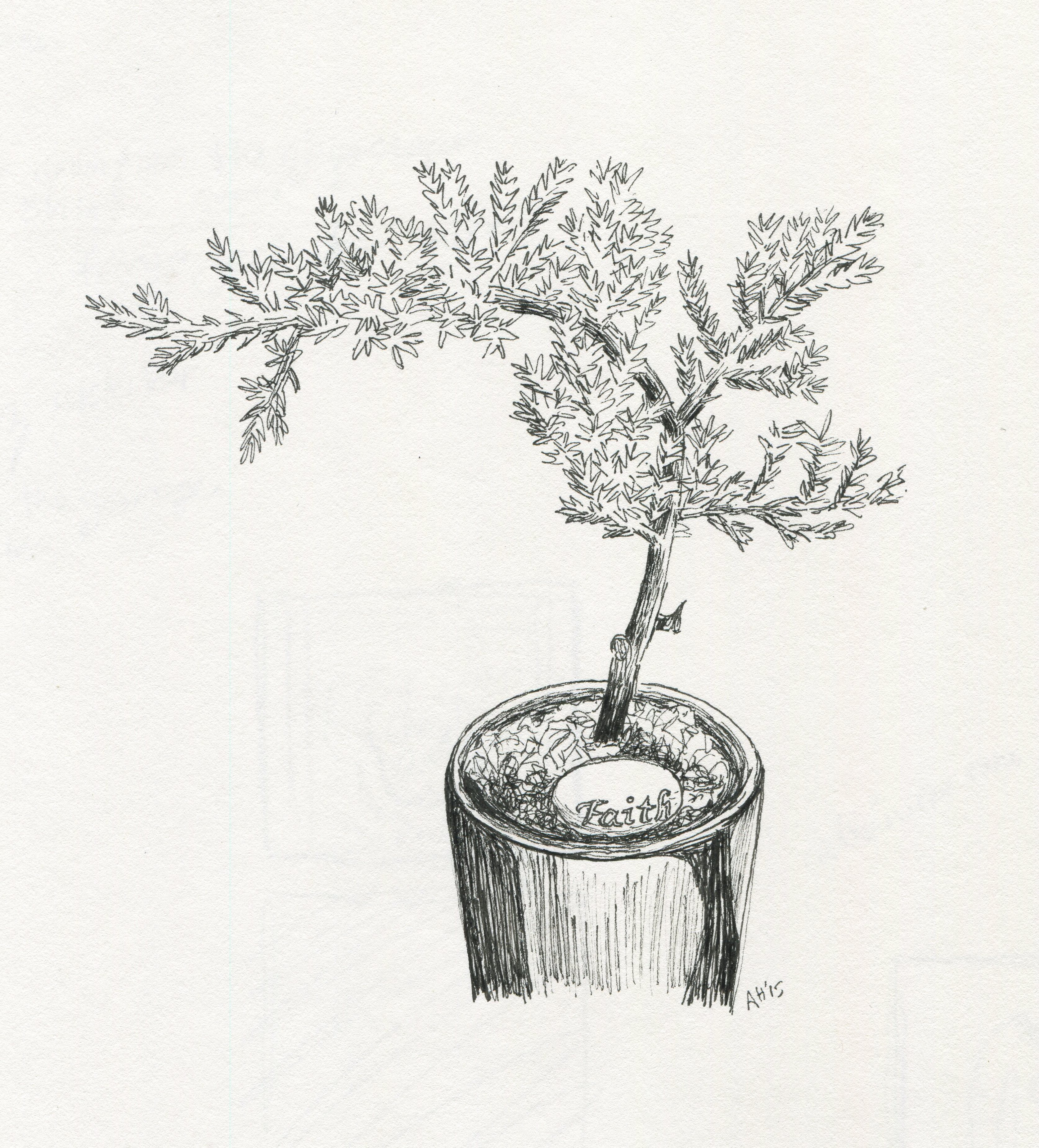 a sketch of a small bonsai tree with a pebble that reads faith by alleanna harris