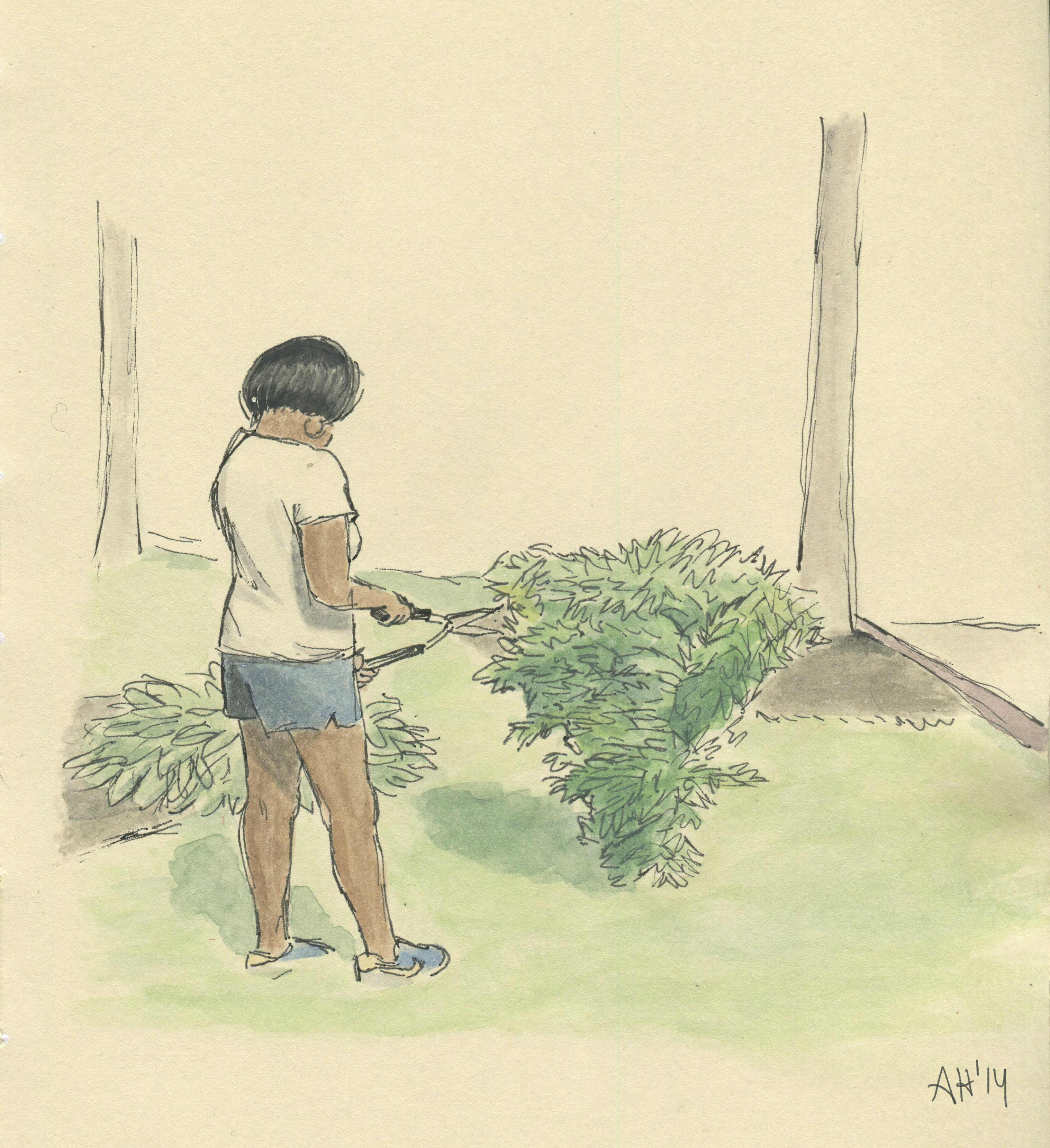 a sketch of my mom cutting a bush in the front yard