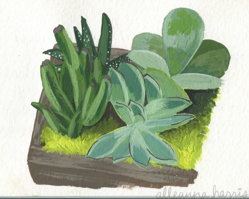 a gouache painting of succulents by alleanna harris
